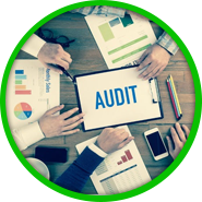 The Effective Auditor